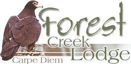 Forest Creek Logo